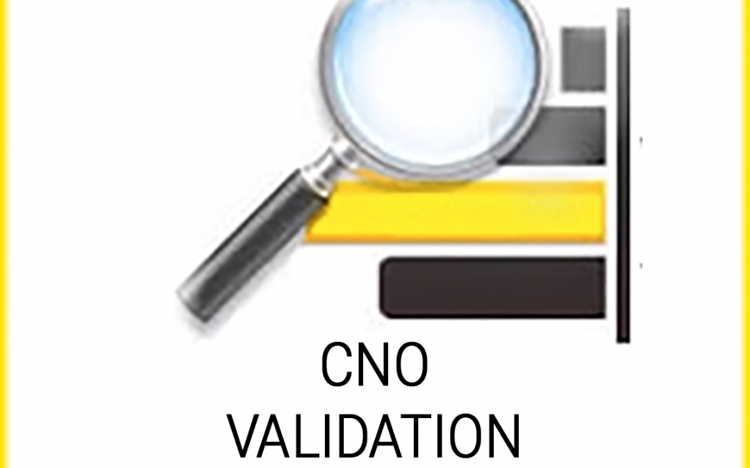 CNO Validation Framework 4.3
